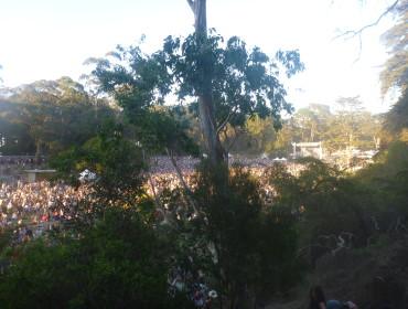 Kære Smukfest-folk - jeg forslår vi rykket festivalen til San Francisco - her er også masser af træer :)