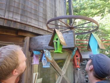 Sjove fuglehuse, men til 65$ stykket mangler vi altså ikke lige et.