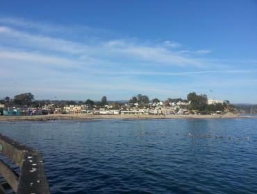 En tur på molen, desværre var søløven hurtigere end mit kamera!