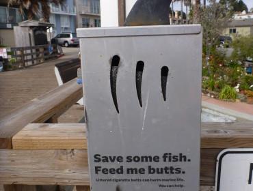 Jeg ved ikke om det er en hajfinne, delfinfinne eller hvad det er for en finne. Men er da en frisk må at opsætte et askebærger.