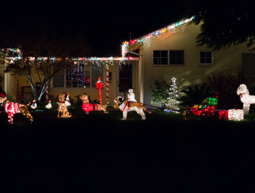 Ikke et særlig vildt hus, men en fin samling af lysende hunde!