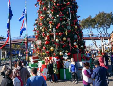Juletræ ved Pier 39