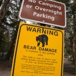 Der er bjørne advarsler overalt!