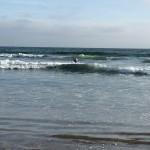 Hurra for bølger!