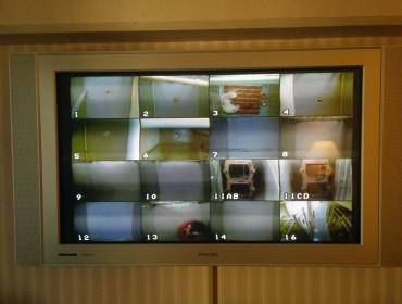 Hvis man har sit hund med på hotel, kan man på sit fjernsyn lige holde øje med dem.
