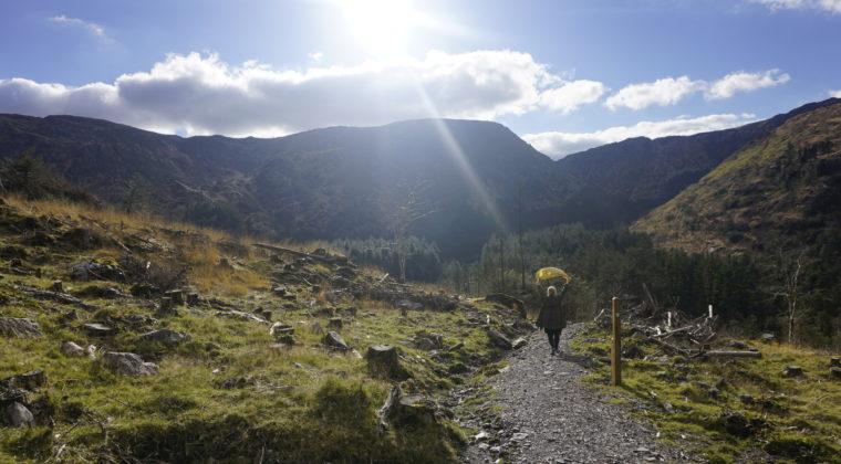 Solen kan godt skinne i Irland.