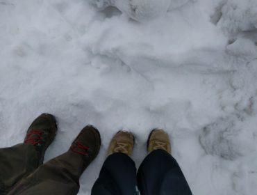 Vi ramte også en masse sne i Thanksgiving.